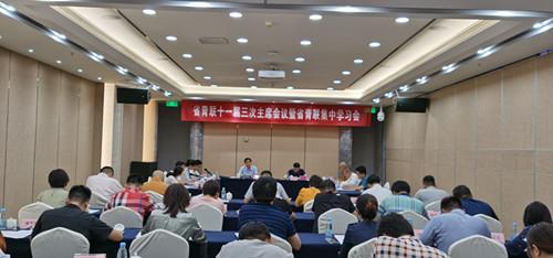 省青联十一届三次主席会议暨省青联委员集中学习会在肥召开